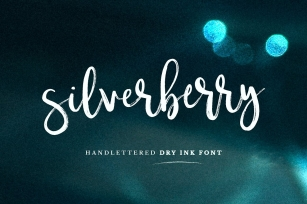 Silverberry - Dry Ink Font Font Download