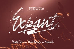 Expant Fonts Duo  Swash Font Download