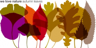 We Love Nature Autumn Leaves Font Download