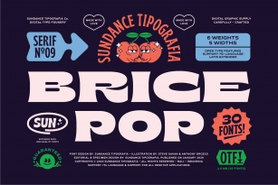 Brice Family Font Download