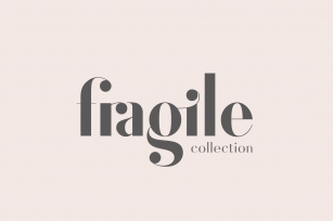 Fragile Collection (Font Bundle) Font Download
