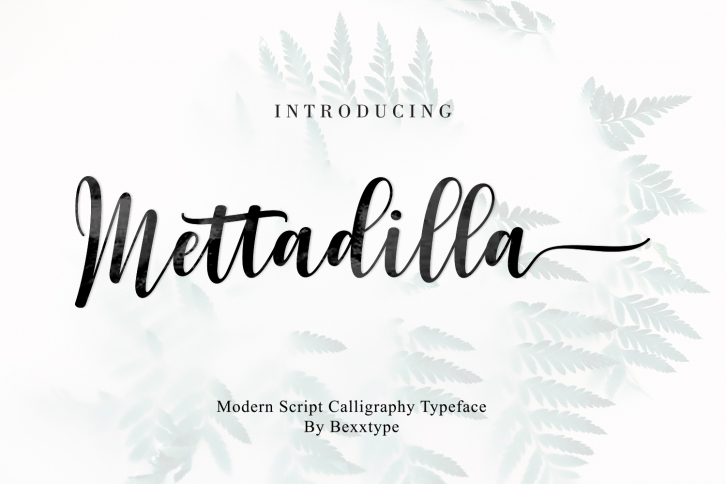 Mettadilla Script||Winter Collection Font Download